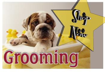 grooming-shop.jpg